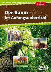 Baum: grosse Auswahl an Unterrichtsmaterial und Arbeitsblättern ...